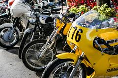 20150221 5DIII Vintage Motorcycle WPB 41 (James Scott S) Tags: show old west classic beach bike canon vintage scott james iron unitedstates florida antique westpalmbeach s palm retro motorcycle biker fl rider 5diii