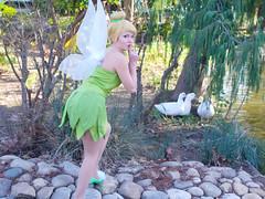 Shooting Fe Clochette - Parc Olbius Riquier - Hyres -2014-12-31- P1980060 (styeb) Tags: cosplay tinkerbell peterpan disney peter fairy shooting pan xml 31 fee decembre 2014 retouche clochette