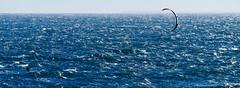 K-s1-0927 (iTrax) Tags: macro dc pentax sigma australia kitesurfing perth western ks1 trigg hsm 18250