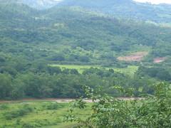 Honduran Forested Hills