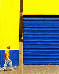 Que seria do amarelo ... (shumpei_sano_exp7) Tags: vivid golddragon colorphotoaward diamondclassphotographer theunforgettablepictures