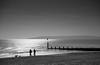 So still (The Green Album) Tags: sea sun men beach dogs walking still sand exercise calm setting glimmer groyne bournemouth