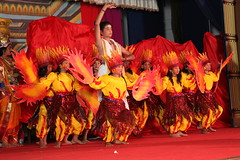 "annual day 2014-15 • <a style=""font-size:0.8em;"" href=""http://www.flickr.com/photos/100003836@N08/16329467491/"" target=""_blank"">View on Flickr</a>"