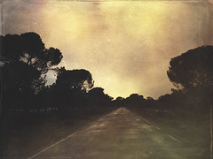 Highway in winter (Daniel Hernanz Ramos) Tags: trees sunset forest way highway perspective approved redsky artisticpictures artisticlandscape ambientpictures pictureswithatmosphere iphone6plus highwayperspectivesunset winterambient