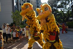 Prancing Lions (yijin56) Tags: new festival dance spring year crowd lion celebration celebrations lunar prancing  auspicious