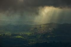 (Alcyonarian) Tags: bali landscape sunrays munduk