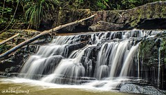 Amazing waterfalls of Kuala Sentul, Maran, Malaysia (Helmiyousif) Tags: life street travel sky people blackandwhite bw panorama woman white abstract man black streets reflection men art cars nature water buildings photography landscapes photo rainbow women faces photos walk background homeless stock cities culture traditions lifestyle tourists elderly jungle waterfalls malaysia roads items pahang jeram maran microstock photocamp coubles kualasentul pelanji