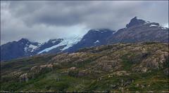 Glaciares (antoniocamero21) Tags: chile patagonia color foto sony paisaje bosque montaa glaciar hielo