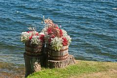 Keeseville, NY (john weiss) Tags: newyork garden places adirondacks human lakechamplain edits keeseville lrcrop lrstraighten labcf11 lrvibclar
