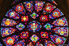 2004-11 Foto impressie - Cathedraal van Reims (Reims/FRA) (About Pixels) Tags: november france art 2004 glass 1130 frankrijk reims kerk fra architectuur cathedrale specials algemeen ardenne champagneardenne mozak collecties herfstseizoen mnd11