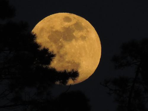 3 marzo 2015 le mie lune . cinque terre