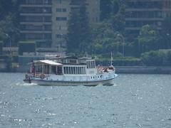 Lake Lugano - Riva Giocondo Albertolli, Lugano - boat - Ceresio (ell brown) Tags: lugano switzerland ticino italianlakedistrict lakelugano lagodilugano glaciallake luganocentro tree trees rivagiocondoalbertolli boat ceresio