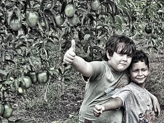 en el campo (Wrabitt/ Thanks all followers...) Tags: children bambini nios infants infancia inocencia campo country parchitas passionfruit ariaaperto