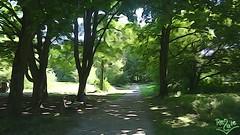 018) Bad Krozingen Duftgarten wm (Renate:) Tags: urlaub bad wein kur gesundheit krozingen