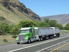 Farm Supply Distributors Freightliner Coronado, Truck #33 (Michael Cereghino (Avsfan118)) Tags: farm supply distributors inc freightliner coronado sleeper grain wagons doubles trailer trucking semi truck