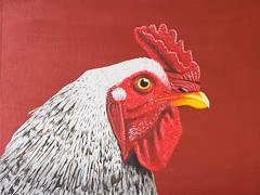 Hhnchen, Acryl auf Malpappe (Gret B.) Tags: red colour rot chicken animal painting huhn farbe acryl tier vogel hahn stolz gemlde gemalt malpappe