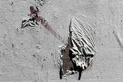 giraffe (overthemoon) Tags: door macro wall paper graffiti schweiz switzerland paint suisse lausanne photowalk torn giraffe svizzera vaud romandie flickrphotowalk passagedessaugettes