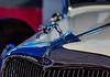 V8 Dog (Walimai.photo) Tags: car coche dog perro ford salamanca museo automoción blue azul reflection reflejo metal nikon d7000 helios 44m4 detail detalle