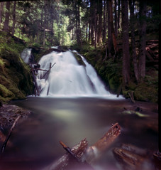 Wrong Turns (ocDeluxe) Tags: pinhole zeroimage 6x9 ektar 100 kodak forest view color long exposure wrong turn trees water waterfall film