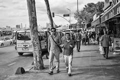 Street 173 (`ARroWCoLT) Tags: 700d stm f28 24mm canon car road tree mapletree maple blackandwhite monochrome vehicle outdoor siyahbeyaz sb bw istanbul skdar turkey trkiye turkei people walking sidewalk insan