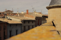 Olite (BRICKSmovies) Tags: olite spain espana pueblo fortaleza fortress castillo castle town roof techo hermoso beautiful focus photography colors morning nice good middle age medieval time times ancient old history historia navarra sky clouds cielo chimenea