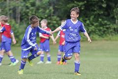 Feriencamp Neumnster 28.07.16 - b (94) (HSV-Fuballschule) Tags: hsv fussballschule feriencamp neumnster vom 2507 bis 29072016