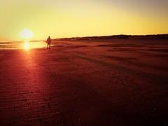 Sunset (Marc Gommans) Tags: sunset panasonic14mmf25 olympus omdem1 cadzandbad thenetherlands beach water strand zomer summer holidays outdoor zeeuwsvlaanderen peolpe reflections shadows