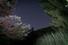 Night time in France... (ParadoX_Design) Tags: luziers mialet le cambonnet anduze france french night sky nighttime stars hill trees space evening late flora long exposure