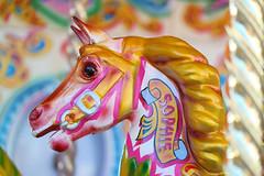 A Day Trip to Brighton (pallab seth) Tags: brightonpier brighton beachlife seabeach populartouristdestination tourism culture uk england summer daytrip activities samsungnx2000 samsungnx85mmf14ifunctionlens adventure horse carousel