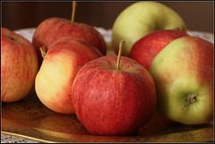 Herbstzeit - Apfelzeit (julia_HalleFotoFan) Tags: pfel apfel herbst frucht obst malus