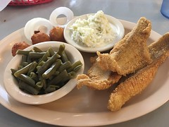 Catfish Dinner (King Kong 911) Tags: catfish coleslaw greenbeans hushpuppies onion