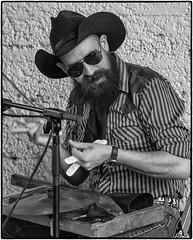 GadellNetSaturdaySessions2016-SydneyStreetShakers_SAF6451-2 (sara97) Tags: band gadellnetsaturdaysessions gadellnetsaturdaysessions2016 livemusic liveperformance missouri music photobysaraannefinke saintlouis saturdaysessions saturdaysessions2016 sydneystreetshakers towergerovepark bw blackandwhite blackwhite hat cowboyhat sunglasses musician