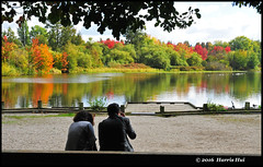 Help Needed - Trout Lake Park N18211e (Harris Hui (in search of light)) Tags: harrishui nikond300 nikonuser nikon d300 vancouver richmond bc canada vancouverdslrshooter sigma1770mm panoramic panoramicframing troutlakepark johnhendrypark eastvancouver lake lakeview trees fall autumn fallcolor autumncolor candid frame framing