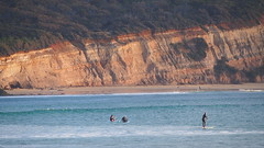 Anglesea Cliffs (Ross Major) Tags: anglesea cliffs water ocean paddle boarding victoria olympusepm2 surfing
