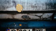 Falling (Brnzei) Tags: autoyashinondx50mmf14 fujifilmxpro1 m42 militari tomioka autumn blue cavemanart decay golden junkyard leaves lomo manualfocus murky rusty signs vignette white bucureti