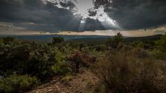 Avant la pluie (JaM - Photos) Tags: samyang14mm exterieur nuage nikon d750 france calme pluie