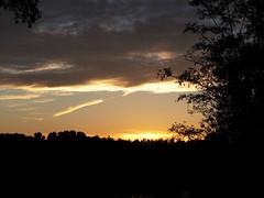 Sonnenuntergang (Jo Dudek) Tags: bäume himmel herbst landschaft laub natur outdoor sonne sechsseenplatte wedau wambach