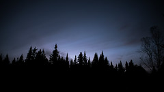 last light (s.W.s.) Tags: saintmicheldessaints quebec canada nikon d3300 longexposure nature outdoor forest dark black twilight gloaming minimal clouds trees silhouette bulbmode ndfilter neutraldensity