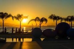 DSC_3175-2 (sergeysemendyaev) Tags: 2016 rio riodejaneiro brazil paradadosmuseus museum museudoamanha sun sunset scenery landscape dusk beautiful silhouette winter          beauty water reflection   cidadeolimpica