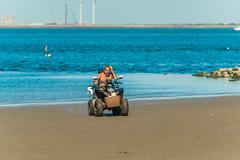 Strand Racer mit Hund (frankwinkler1969) Tags: oosterschelde nordsee kamperland holland niederlande zeeland wasser quad