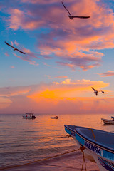 Sunrise in Holbox (Luis Montemayor) Tags: sunrise ocean oceano sea mar horizon horizonte sky cielo clouds nubes birds aves