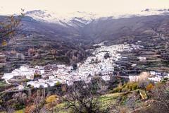 Trevelez DSC02475_ (Chris Belsten) Tags: winter mountains spain andalucia sierranevada trevelez jamon alpujarras mulhacen lasalpujarras