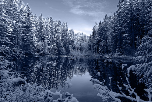 Snow in B&W