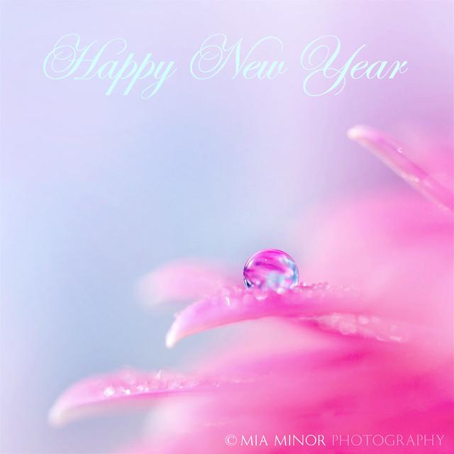 Happy 2015!!!