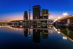 Dawn in Silence, Tokyo (45tmr) Tags: japan tokyo cityscape nightscape pentax 東京 夜景 daybreak k3 東京スカイツリー tokyoskytree pentaxk3