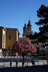 Innsbruck Platz vor dem Landestheater Rennweg (pelu@muc) Tags: austria tirol day sony clear tyrol innsbruck ilca77m2 a77m2 sonyilca77m2 sonya77m2
