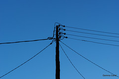 DSC_2263 (gemma_canal) Tags: blue sky azul photography nikon favme silouette cables cielo silueta followme