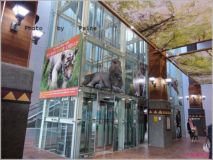 釜山動物園 (63).JPG