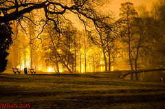 Woluwe Park in Artificial Lights (Imran's) Tags: park brussels bronze 1 nikon long exposure belgium time stage awards 1855  woluwe goldmedalaward legacyart saariysqualitypictures d5100 super~six silvermedalaward expertgoldlevelflickr