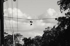 Shoe-in (Occasionally Focused) Tags: blackandwhite bw monochrome mono shoes pentax takumar manualfocus 135mm manuallens k30 unmetered justpentax darktable takumarbayonet takumarbayonet135mm125 singleinfebruary2015 takumarbayonet125135